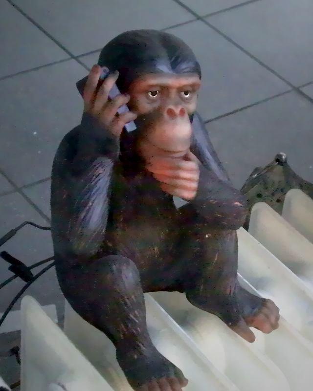 Schaufensterdekoration: Ein Affe, der mit einem Handy telefoniert